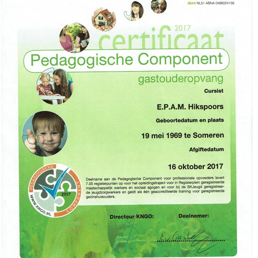 pedagogiche componenten  behaald